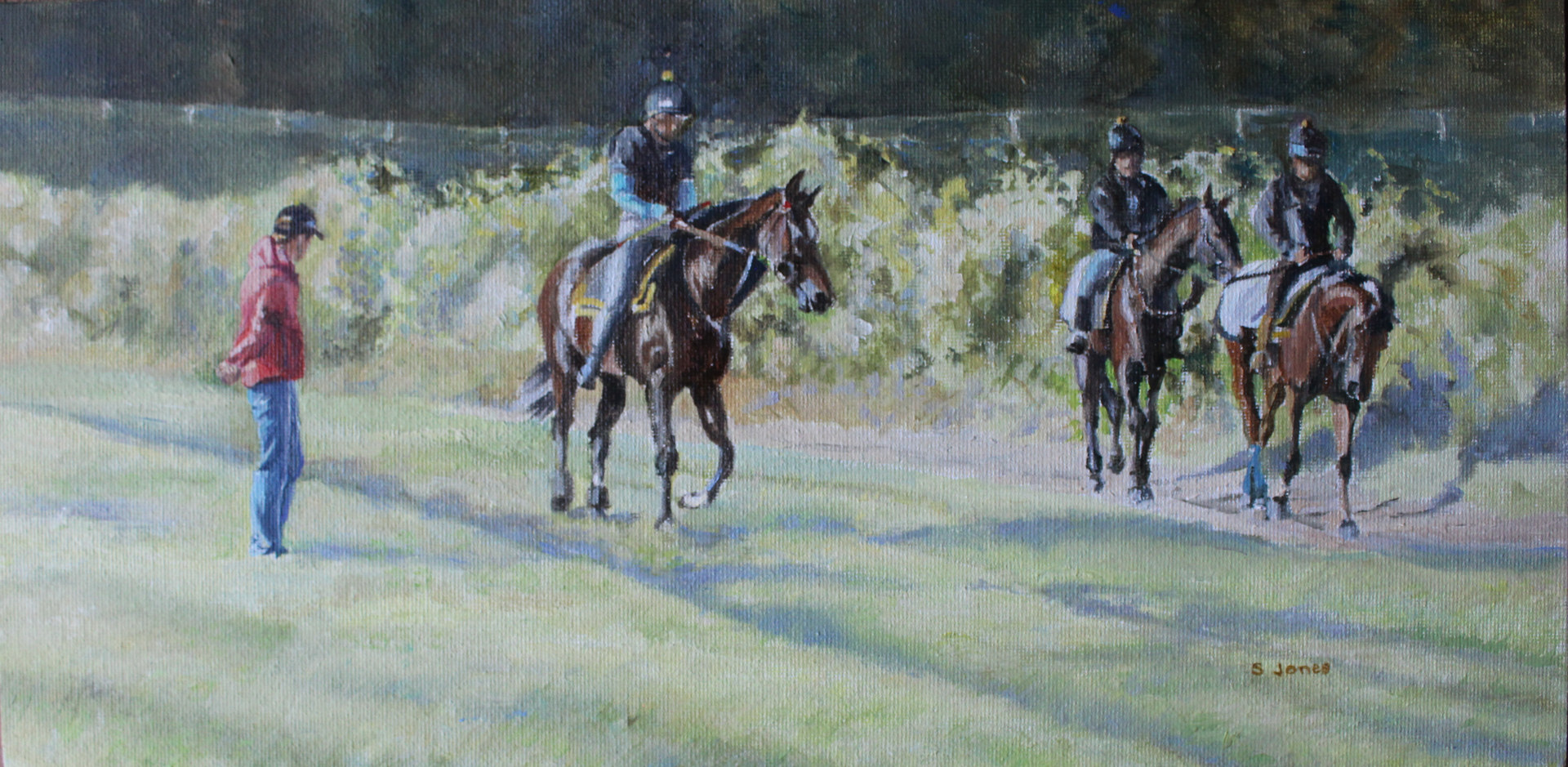 coming off the gallops