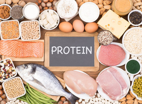 Who Needs Proteins? And Where Can We Get It From?