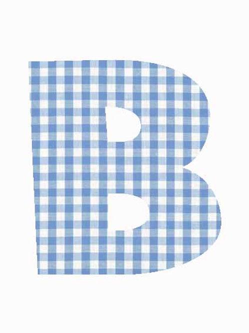 B - Blue Gingham
