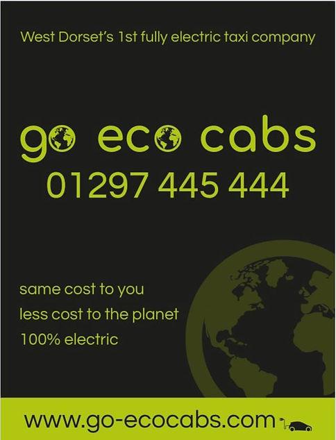 GoEco board.jpg