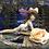 Thumbnail: Bombshell Belle (Deluxe)