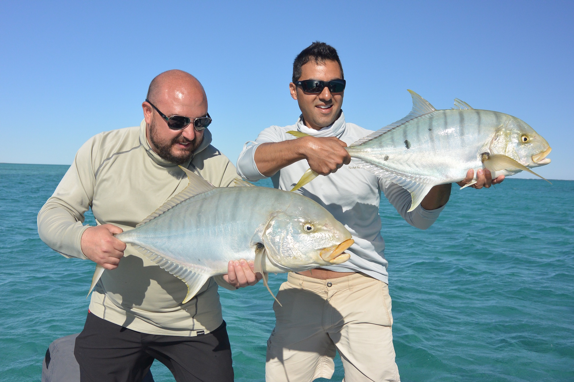Golden trevally double