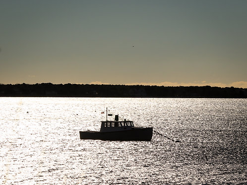 Shimmer Boat