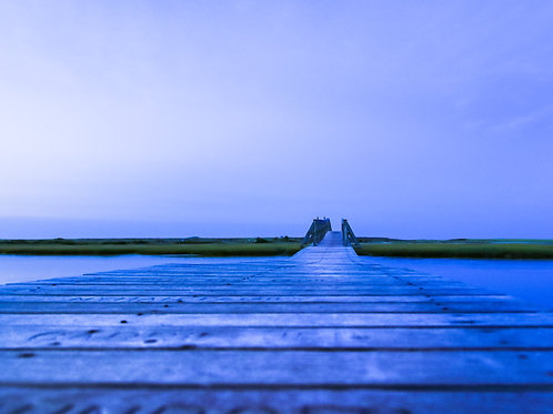 Sandwich Boardwalk, bugs view..