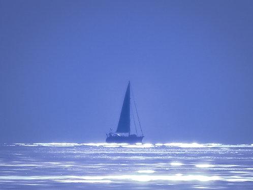 Shimmering Sail