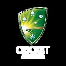 CA Public Logo_STANDARD_RGB_VERT_REV.png