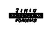 ZEF-logotipas_lt_-RGB.png