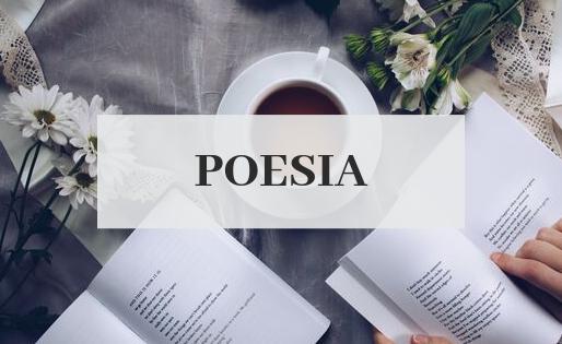 Poesia, arte da abrangência