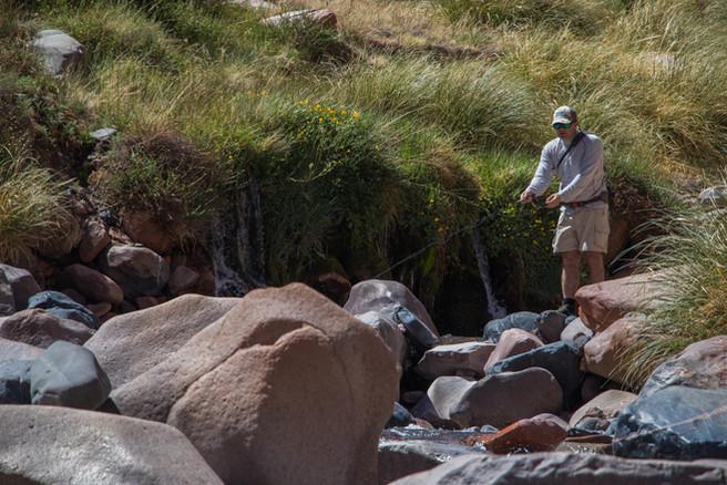 Fishing in Mendoza - Yellow Creek