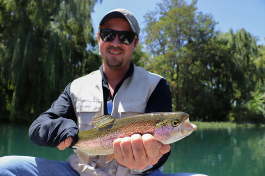 A rainbow trout from the lagoon.