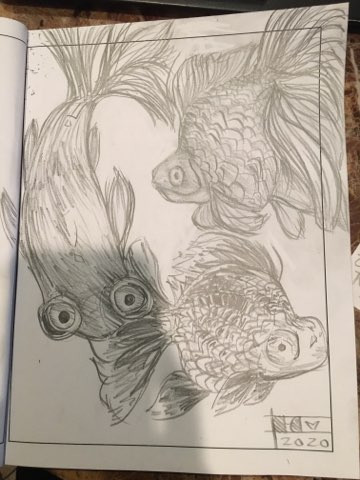 fishes.jpg