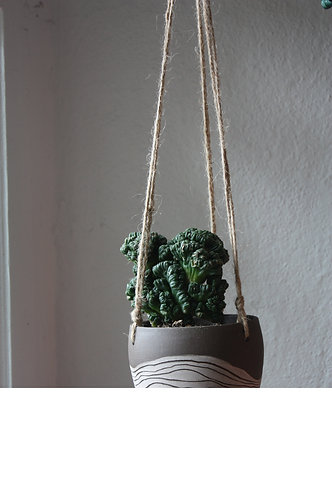 hanging striation planter