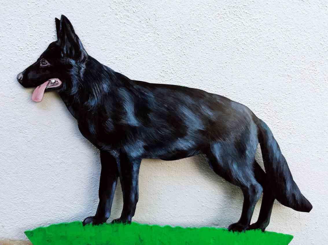 schwarzer-schaeferhund-wetterfahne-2019.