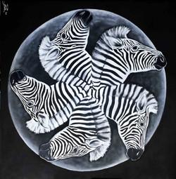 zebra-quintett-s-w-oil-100x100cm-puk-202