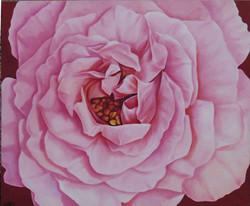 große-rosenbluete-oel-leinwand-puk