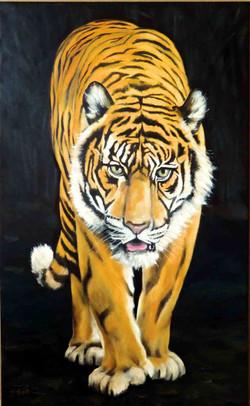 tiger-frontal-oel-leinwand-55x90cm