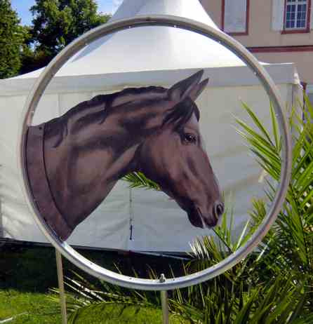 Pferdekopf-braun-drehbar als Wetterfahne