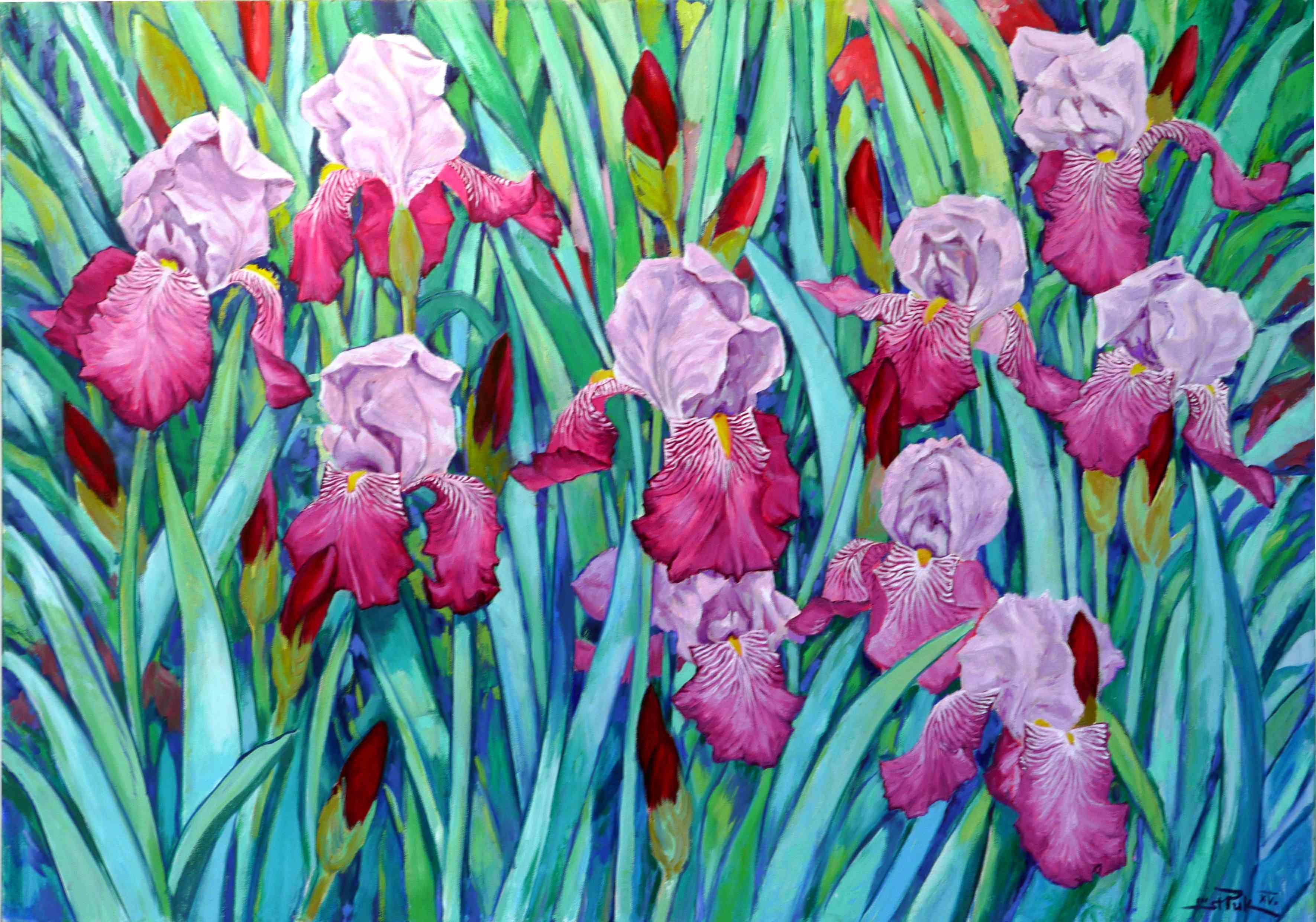 Iriskomposition, zweifarbige Iris, Öl/Le