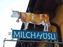 milchhuesli-wiechs-hinterwaelder-kuh-2018