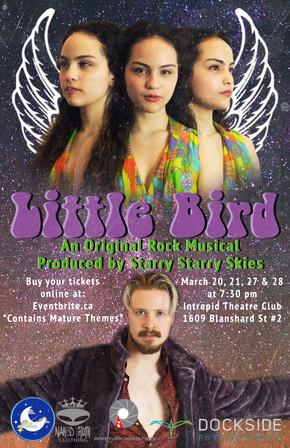 Flyer for Little Bird