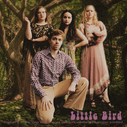 Little Bird CD cover