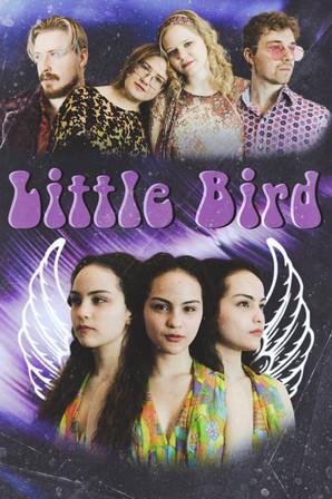 Promo Poster Image for Little Bird