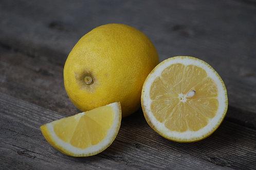 Citrons Primofiori