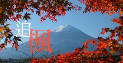 【富士河口湖紅葉祭 11 月 1 日開催】