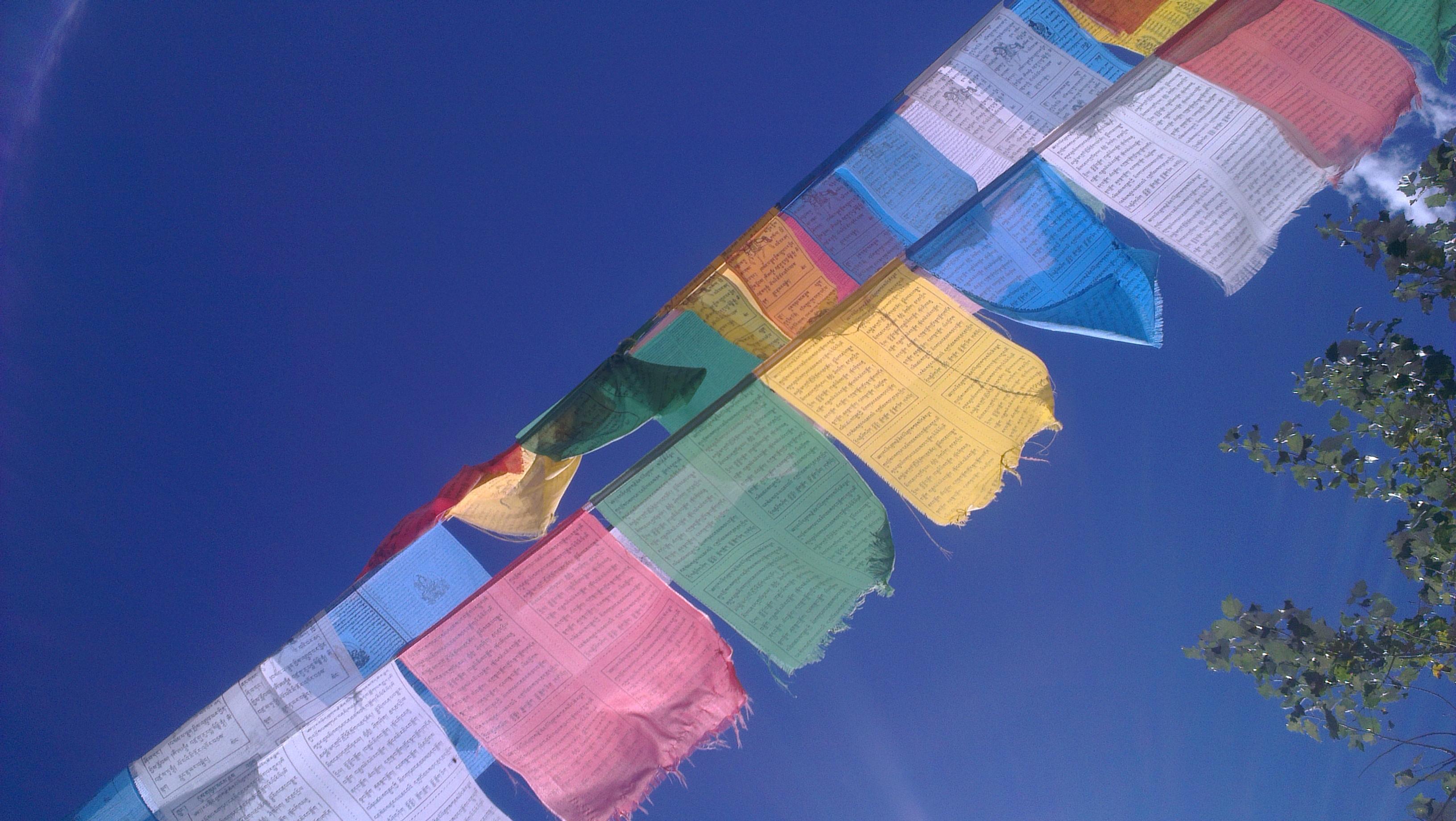 【去西藏尋訪天鵝湖】