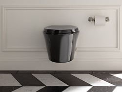 KOHLER Black Toilet
