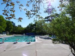 DPSC Main Pool