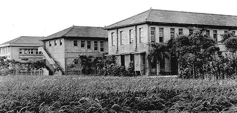 三棟校舍與稻田.jpg