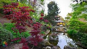 orto-botanico-roma_20180417231444.jpg