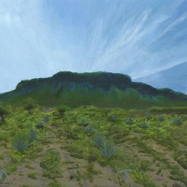El Cerro del Petacal