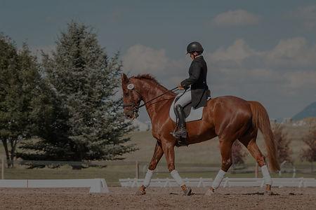 man in black helmet riding brown horse during daytime_edited.jpg