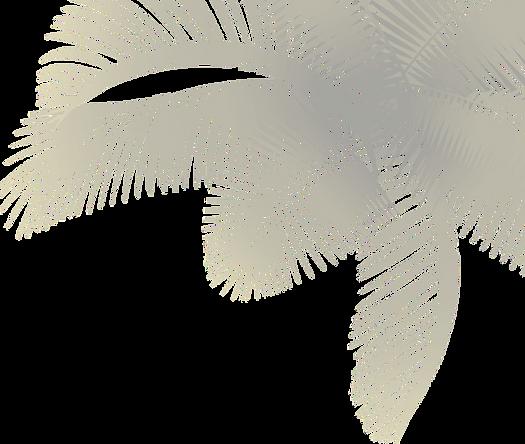 Palmera%25252520azul%252525202%25252520F