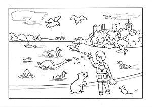 feeding swans 600dpi.JPG