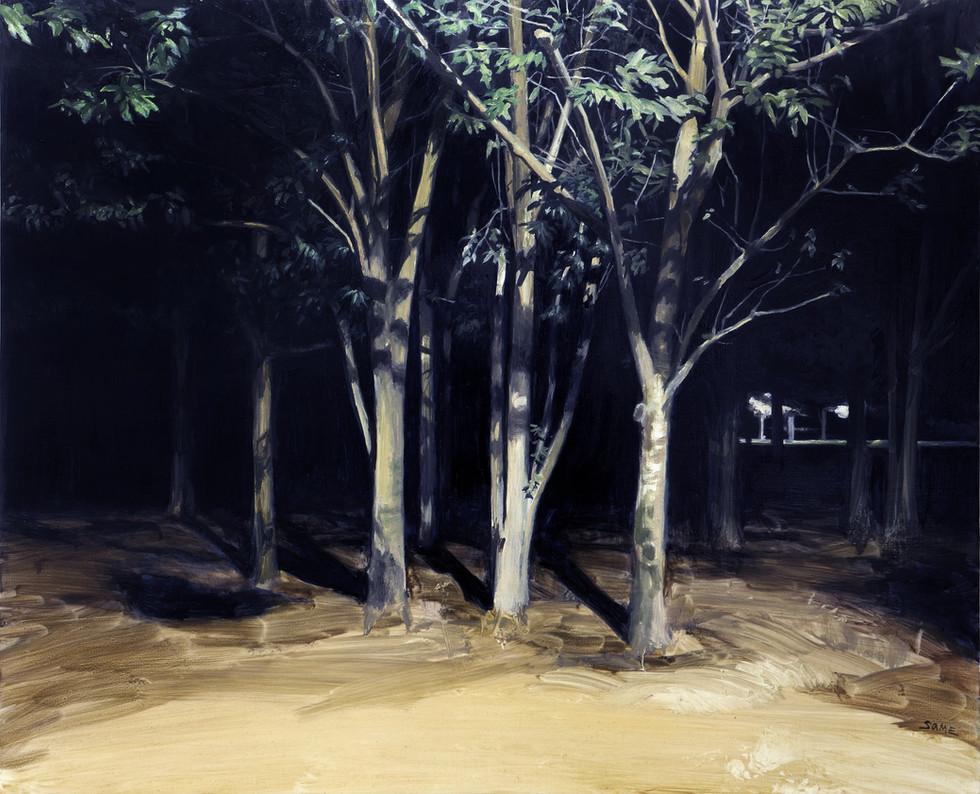 Sage  2017 652×530mm Oil on canvas