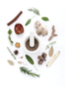 herbs-906140_1920_edited.jpg