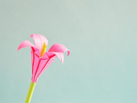 Trio of Calm: Attitude of Gratitude, Self Care, Breathe