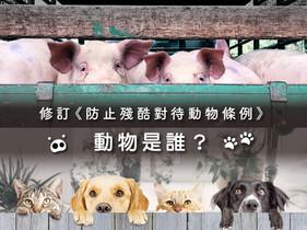 修訂《防止殘酷對待動物條例》——動物是誰