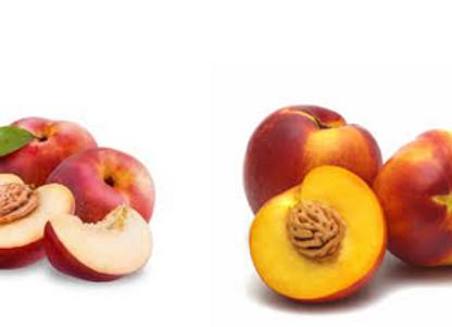 Confiture aux deux Nectarines