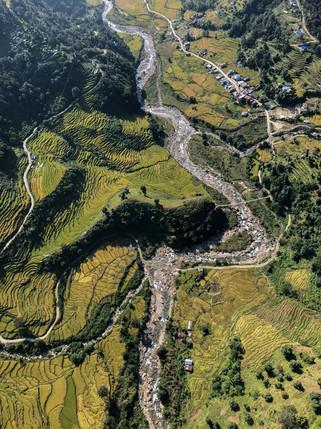 Mardi Himal Rice Fields