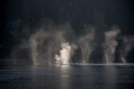 Alaskan Fireworks