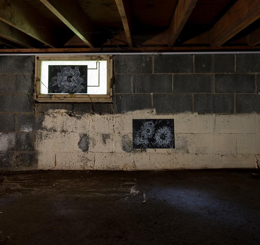 darkZone, burden, NJ06.jpg