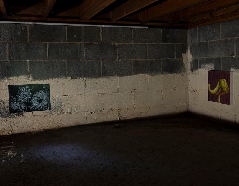 darkZone, burden, NJ09.jpg