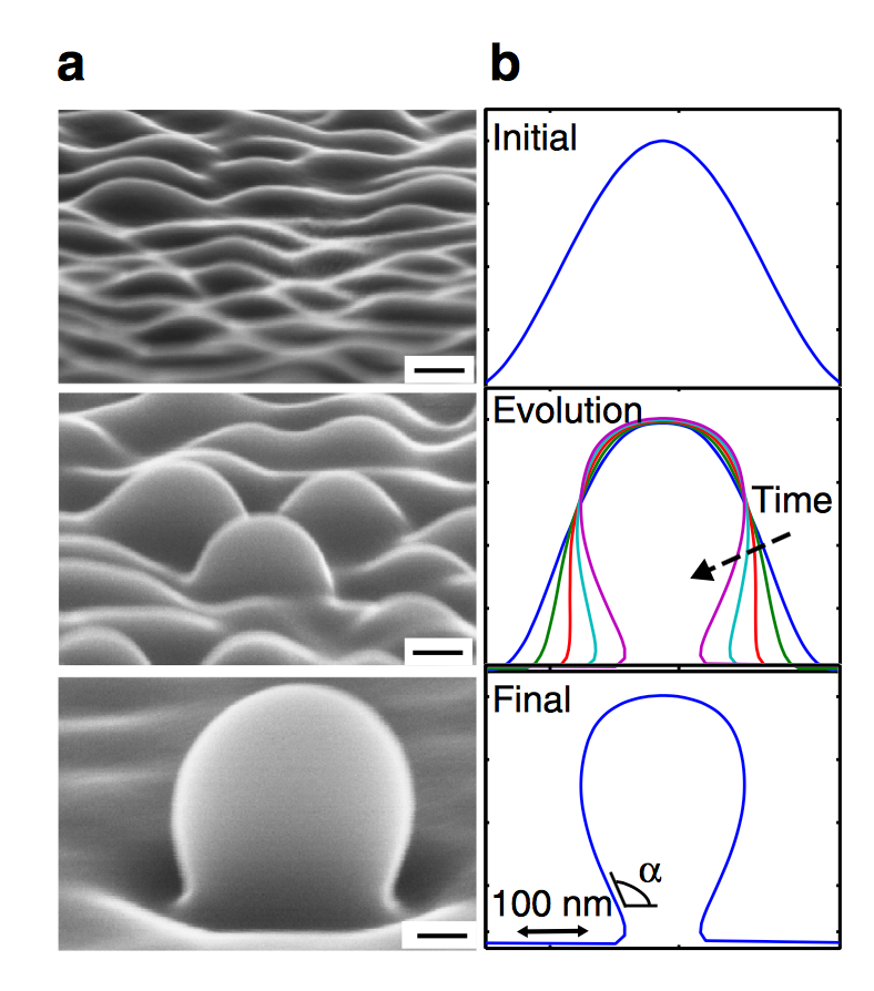 Development of Facetless Nano-Crystal