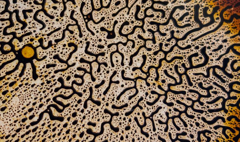 Ferrofluid Patterning