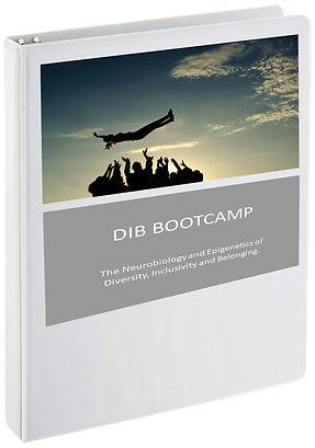 DIB Boot Camp cover.jpg