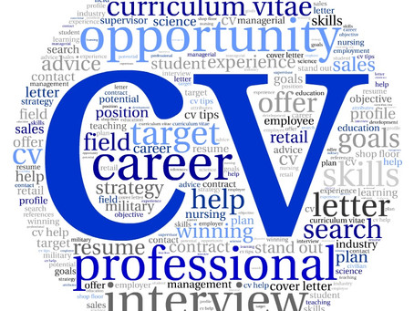 4 Reasons Why You Shouldn't Rely on CV Scanning Software